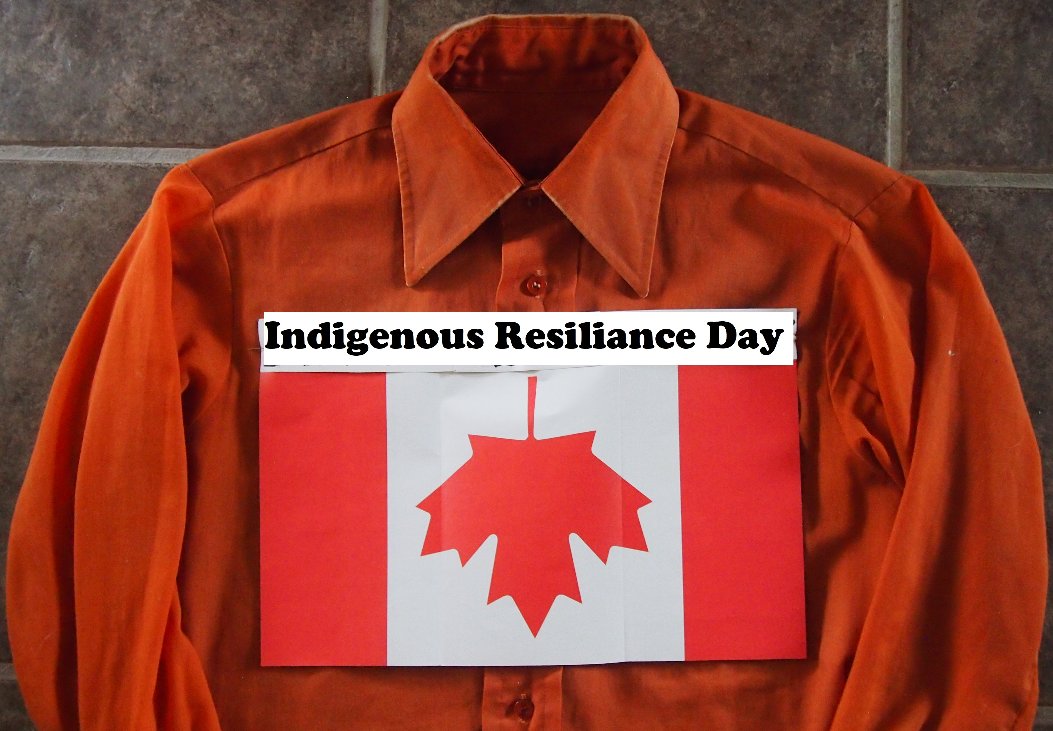 Reconcili-ACTION Role for Museums UPDATE, 1 July 2021: Indigenous Resilience Day