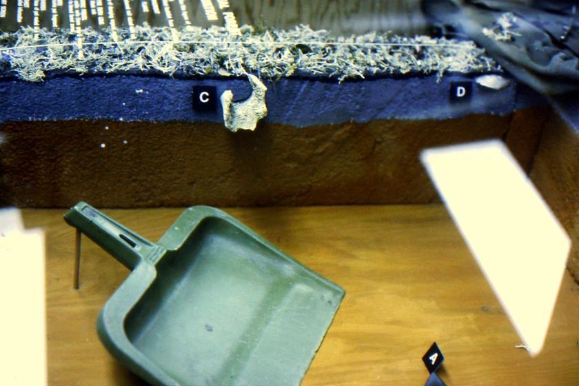 dust pan & trowel excavation equipment