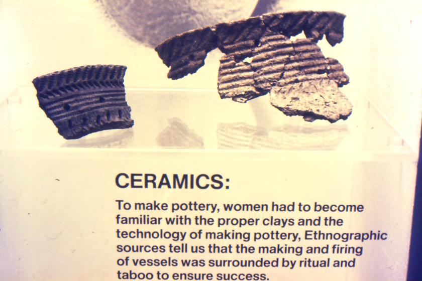 ceramic pot rim sherds