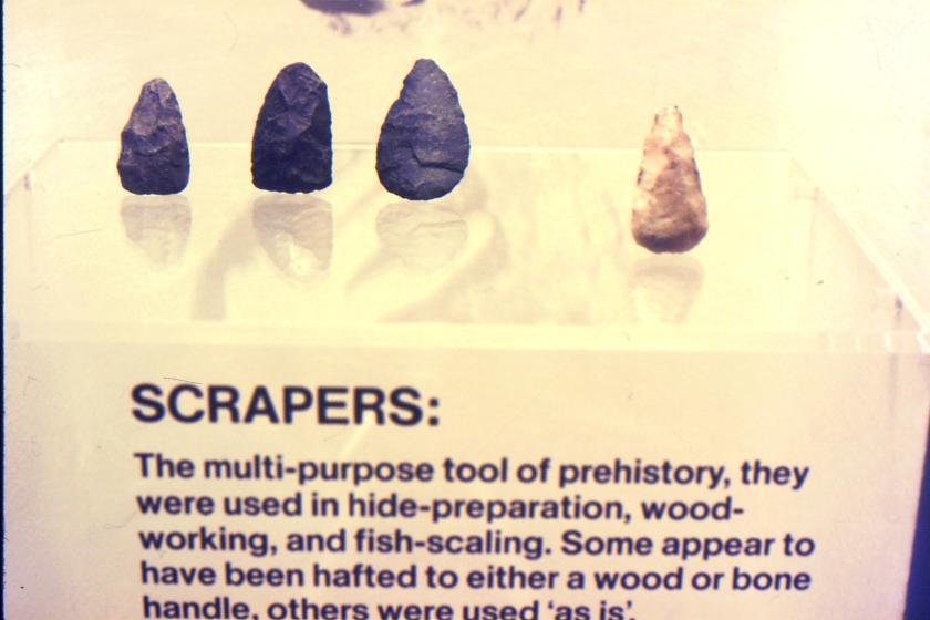 several stone scraping tools