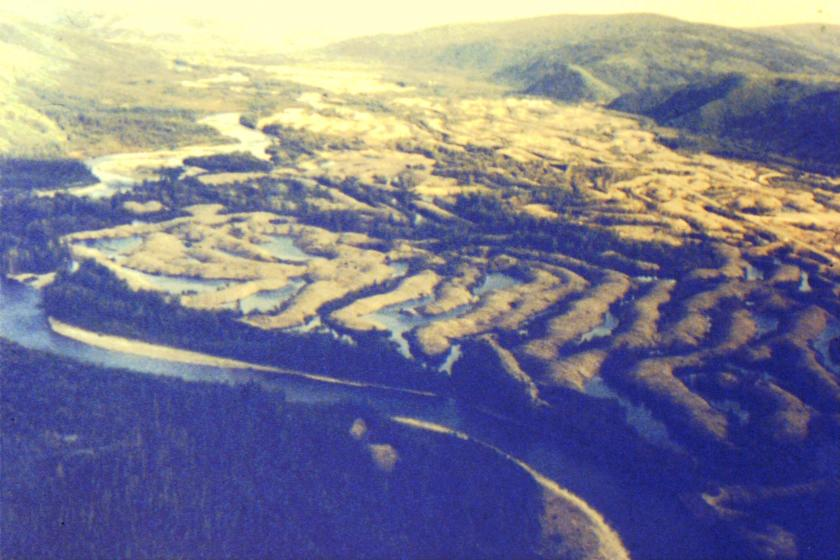 dredge tailings near the mouth of the Klondike River