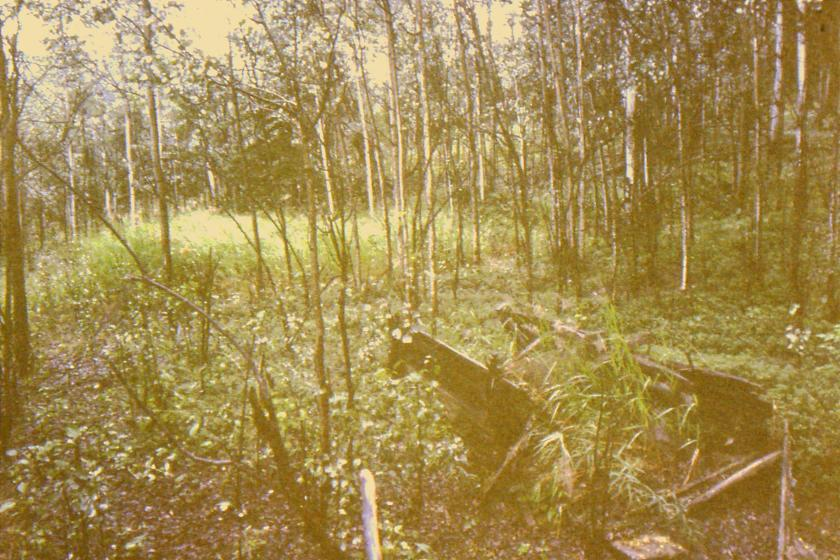 Historic remains on Hunker Creek Road.