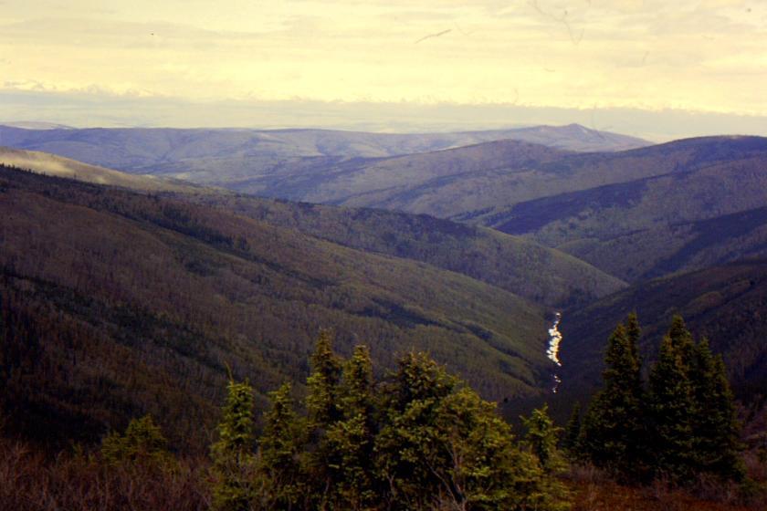 View of Hunker Creek