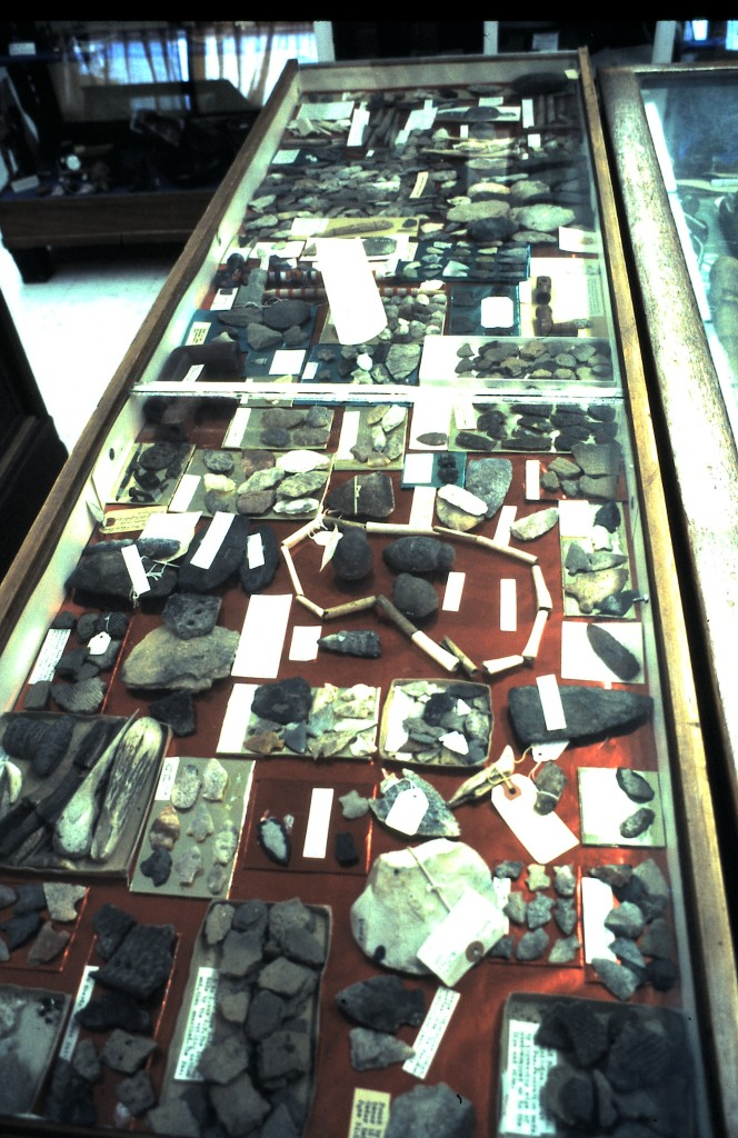 Waller Museum archaeological display